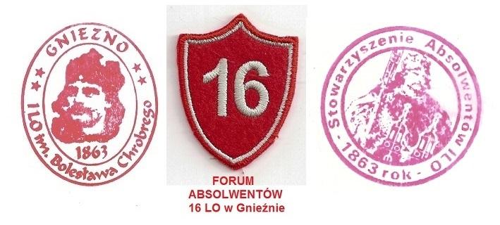 """Forum GNIEZNO- 16 LO w Gnieźnie-""""Nasze lata szkolne i dzień dzisiejszy""""  Strona Główna"""